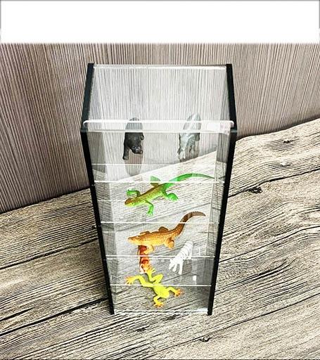 Shing Fu Model Display Box